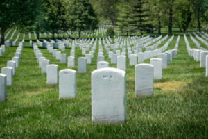 Abandoned and Scam Projects Top List of Dead Cryptos, Analysis